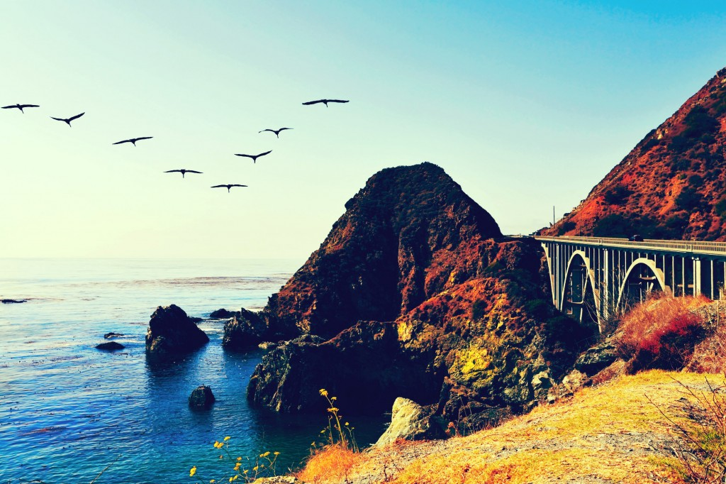 Birds in V-Formation along the Pacific Coast Highway in California