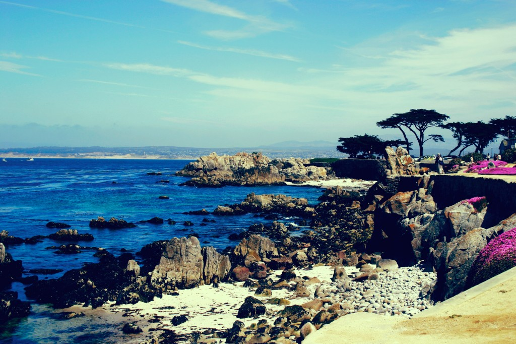 Monterey California along the Pacific Coast Highway