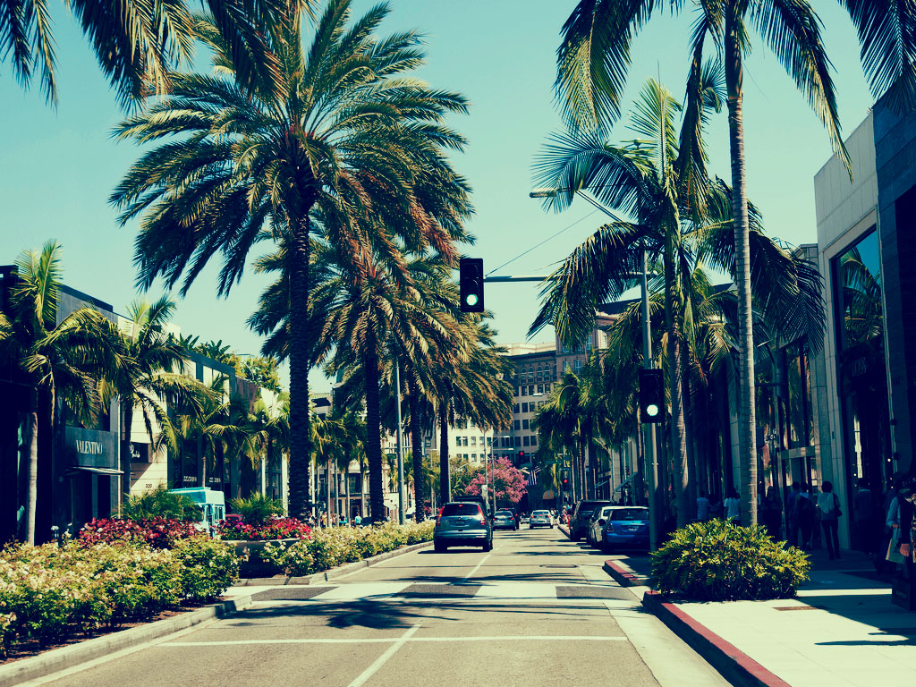 Rodeo Drive Palm Trees