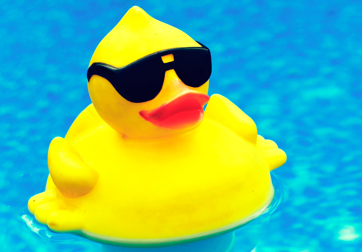 Rubber Duck With Sunglasses